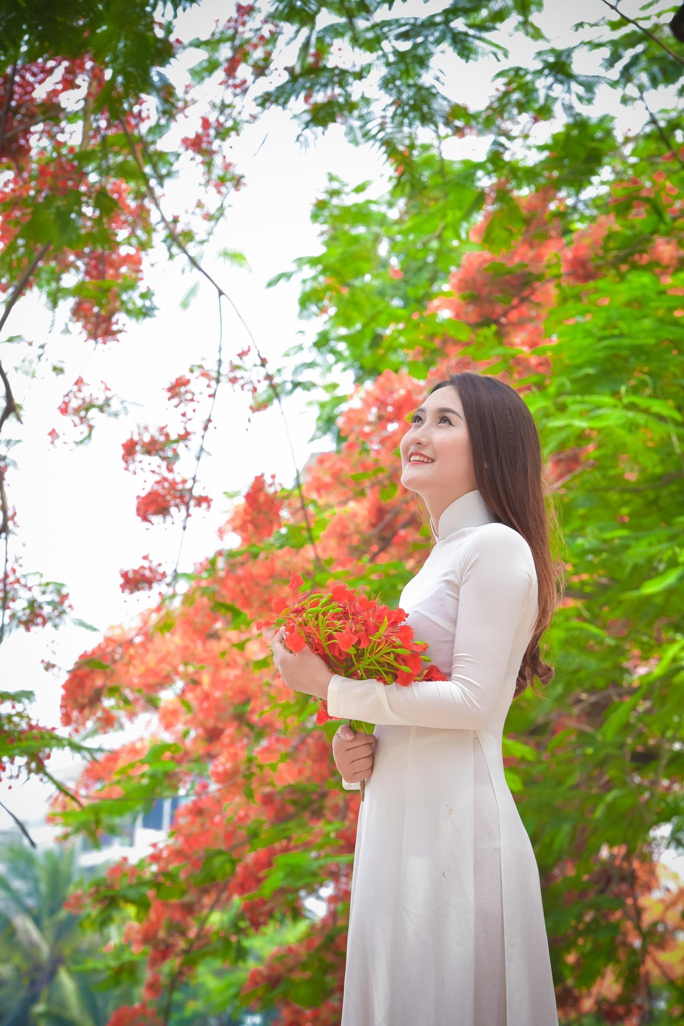 """Thiếu nữ Hà thành mơ màng bên hoa phượng """"rực cháy"""" - 5"""
