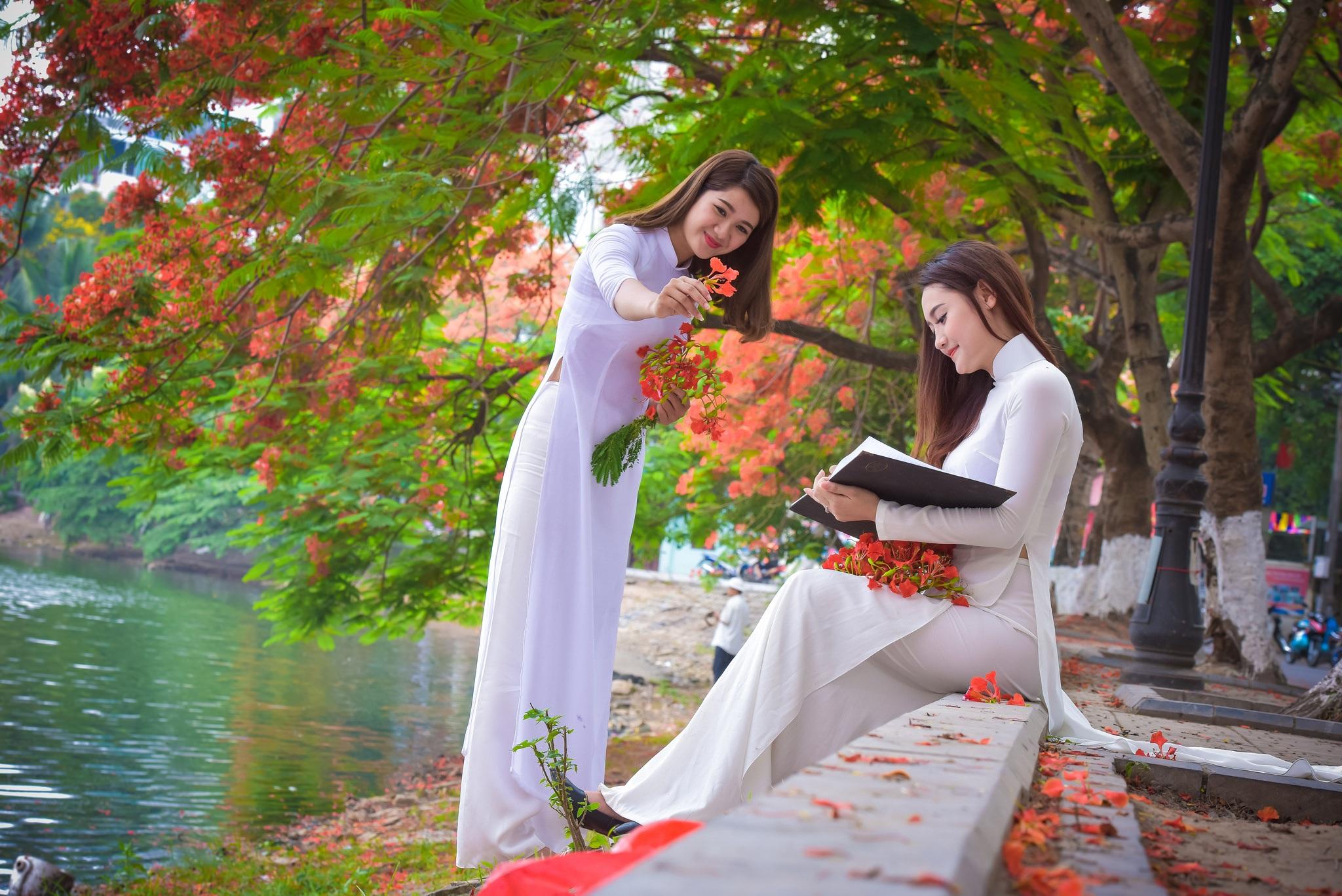 """Thiếu nữ Hà thành mơ màng bên hoa phượng """"rực cháy"""" - 6"""