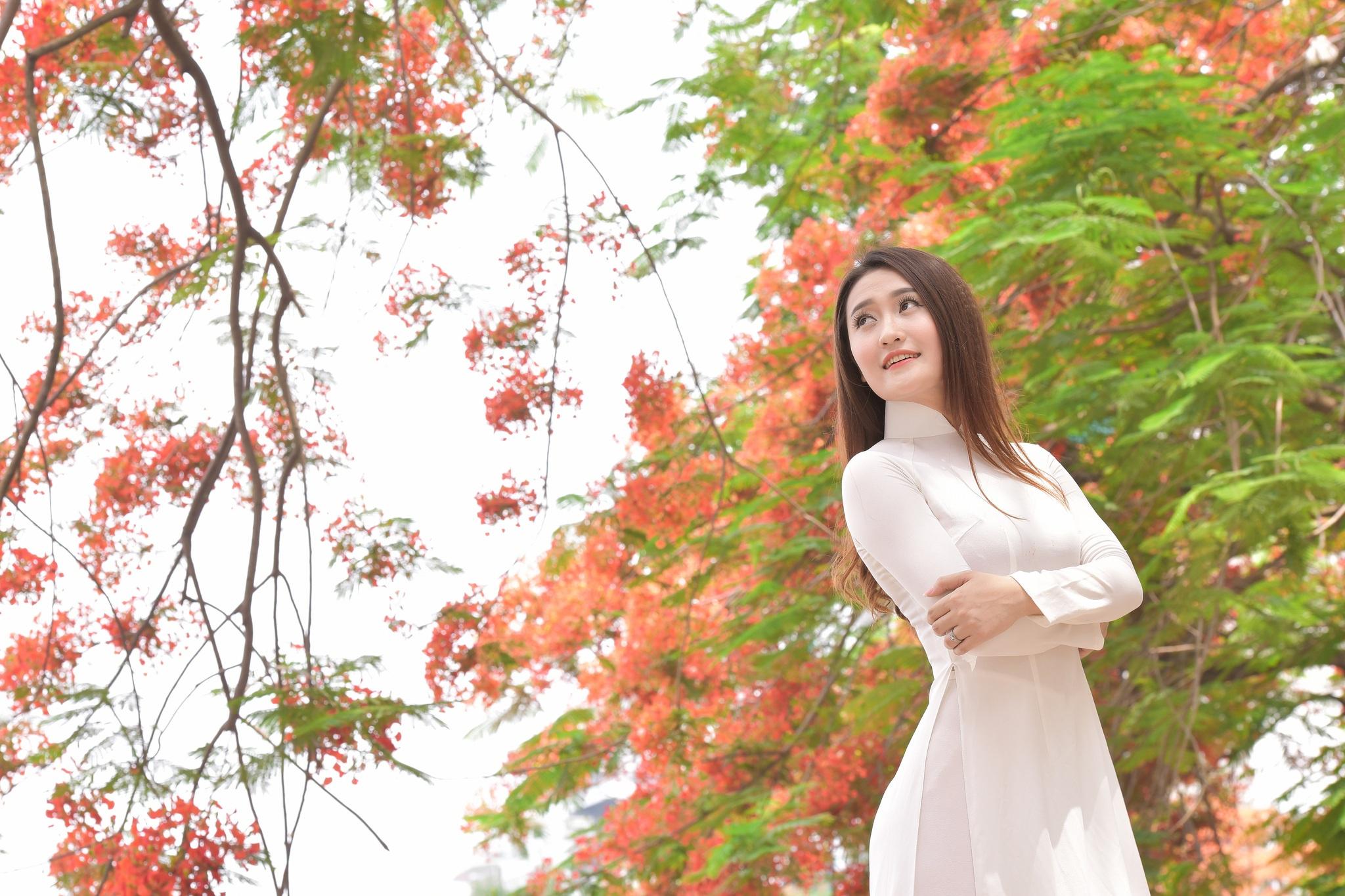 """Thiếu nữ Hà thành mơ màng bên hoa phượng """"rực cháy"""" - 10"""
