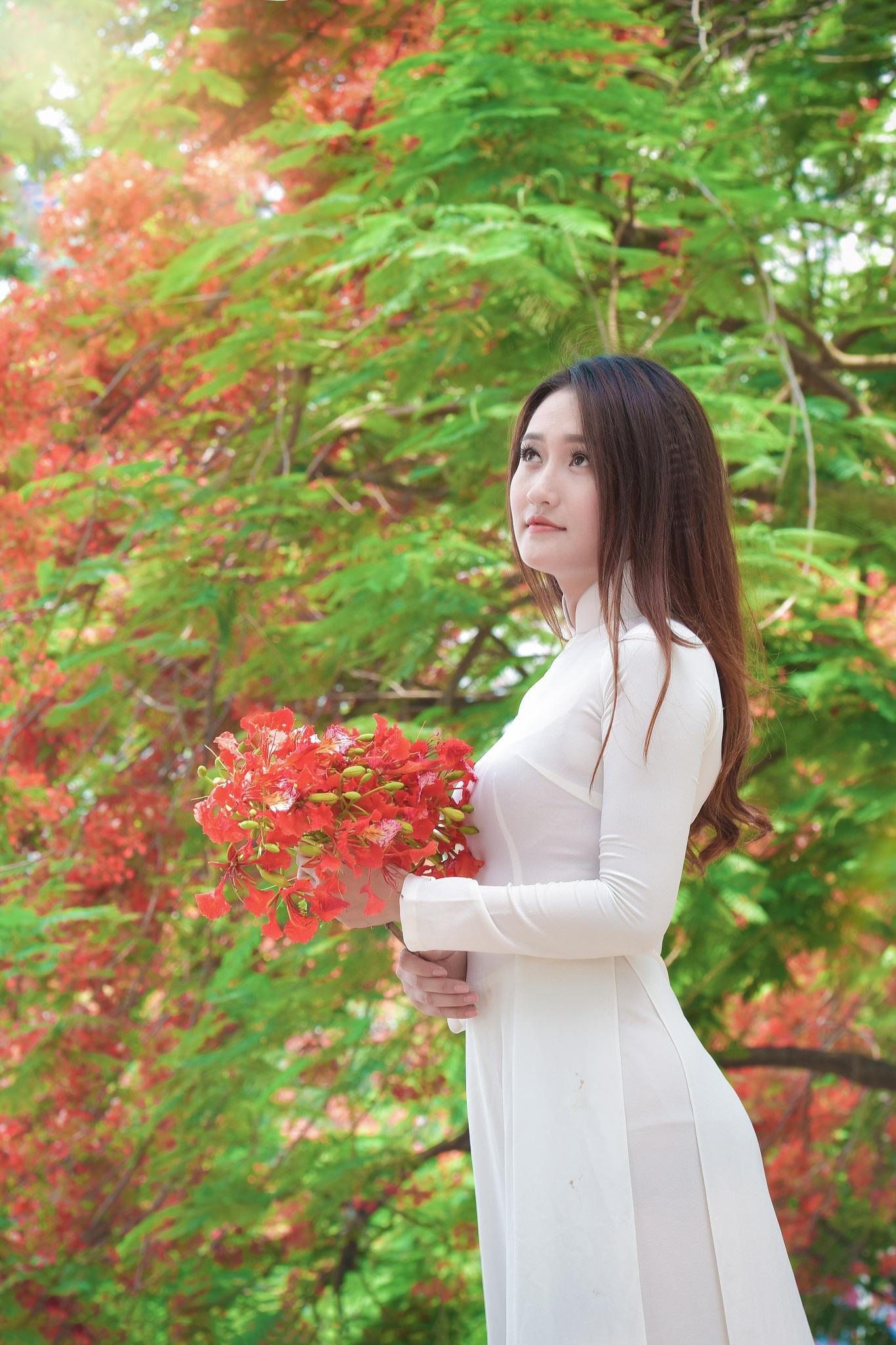 """Thiếu nữ Hà thành mơ màng bên hoa phượng """"rực cháy"""" - 11"""