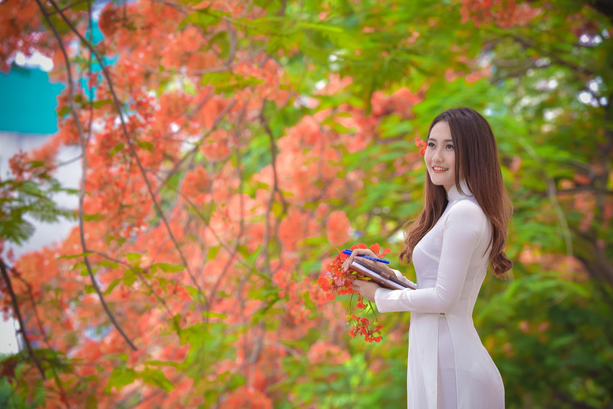 """Thiếu nữ Hà thành mơ màng bên hoa phượng """"rực cháy"""" - 15"""