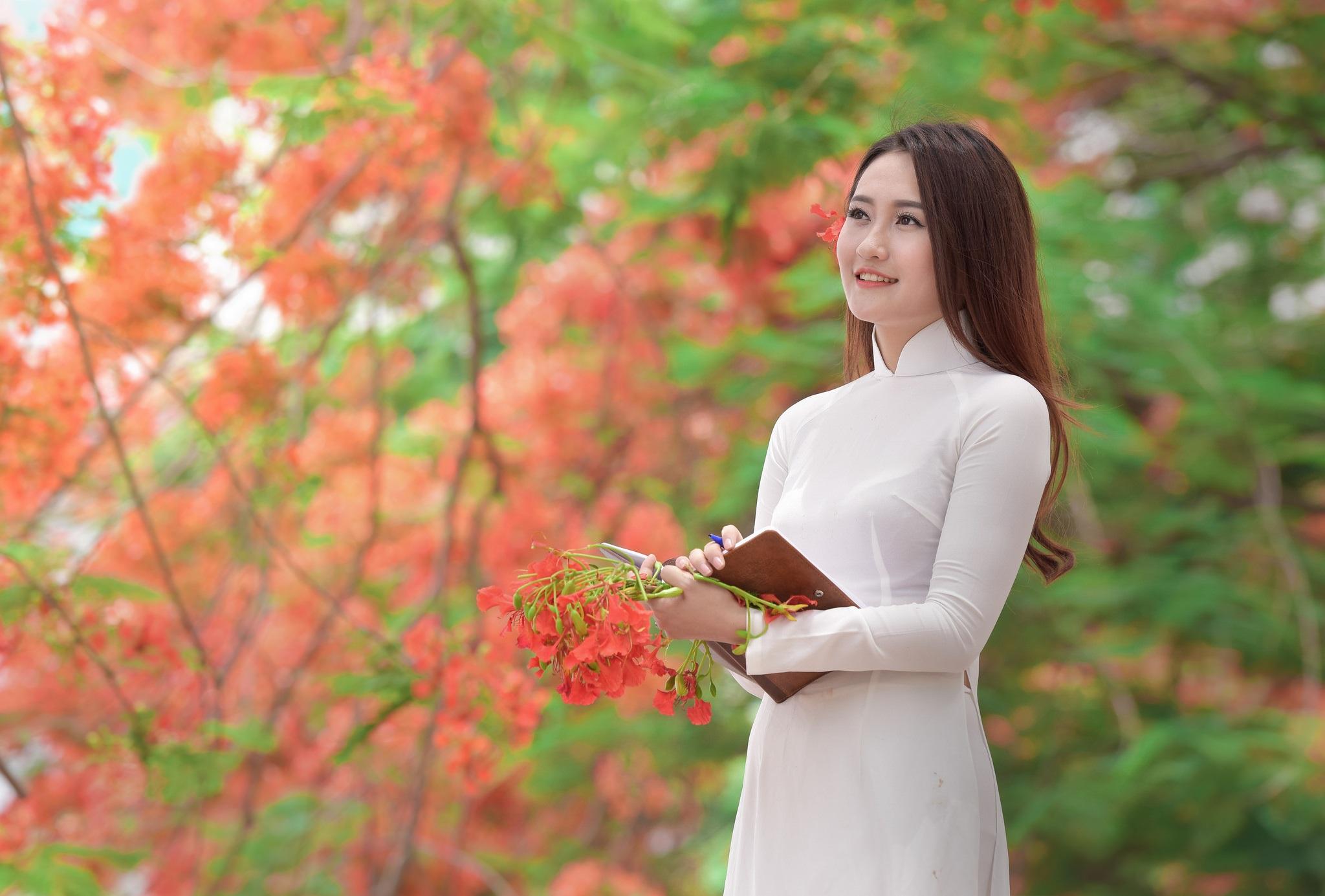 """Thiếu nữ Hà thành mơ màng bên hoa phượng """"rực cháy"""" - 22"""