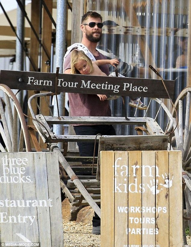 Chris Hemsworth có 1 sự nghiệp rất phát triển những năm gần đây, anh tham gia nhiều phim bom tấn đạt doanh thu cao