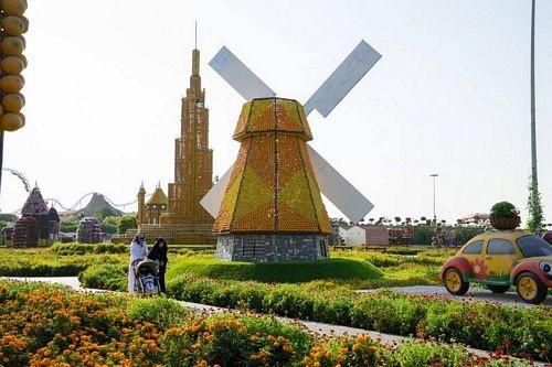 Khám phá Abu Dhabi: Thành phố ngàn hoa trên sa mạc - 1