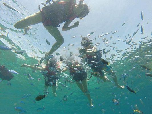 Chào đón đoàn là làn nước trong vắt, được mệnh danh là Blue Crytal Water và tầng tầng lớp lớp đàn cá lớn nhỏ. Hoạt động thích nhất của các bạn nhỏ là cho cá ăn