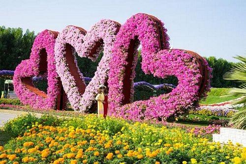 Khám phá Abu Dhabi: Thành phố ngàn hoa trên sa mạc - 6