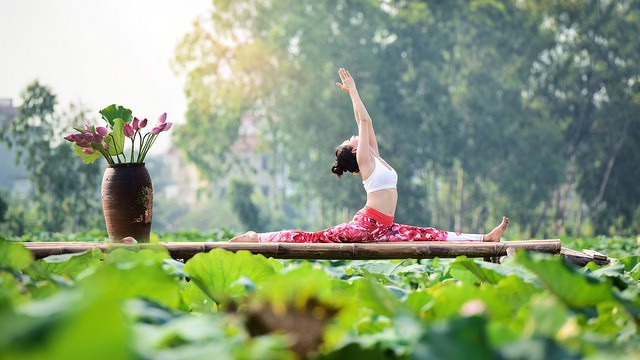 Tạo dáng yoga đẹp mắt bên hồ sen của cô gái Hà thành - 14