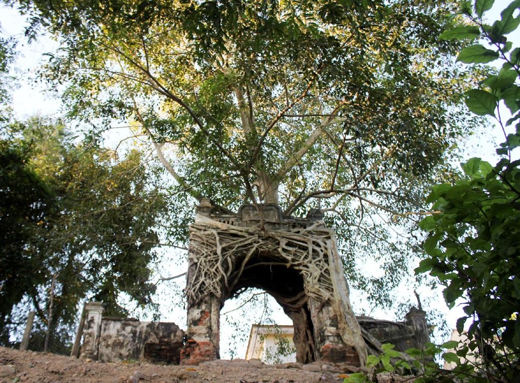 Thân, rễ cây đa bao bọc cổng phủ Tương tạo thành một công trình độc nhất vô nhị ở miền Tây Nghệ An.
