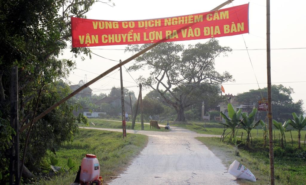 Vùng dịch lợn tai xanh đã được khoanh vùng, kiểm soát tránh lây lan.