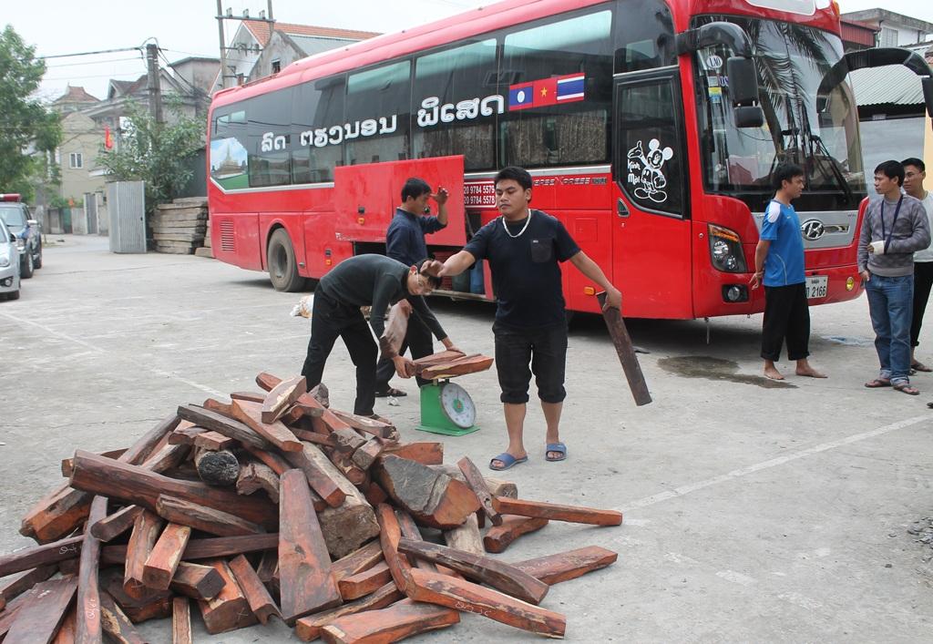 Xe khách mang BKS Lào chở gỗ lậu bị cơ quan chức năng tỉnh Nghệ An phát hiện và bắt giữ.
