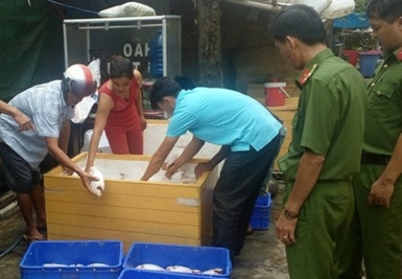 Phát hiện gần 1 tấn cá điêu hồng thối trong quán cơm - 1