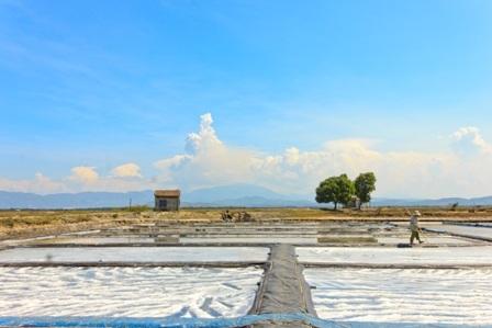 Cánh đồng muối Tam Hòa, xã Tam Hiệp, huyện Núi Thành, Quảng Nam