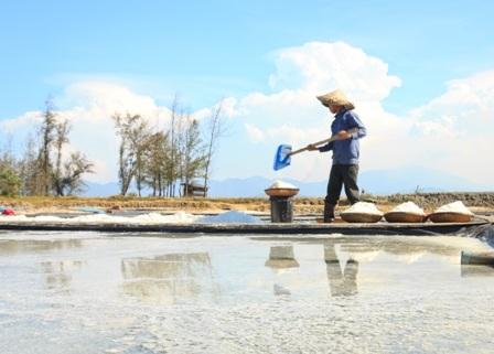 """""""Bóng muối"""" trên cánh đồng muối ở Quảng Nam - 4"""