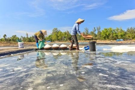 """""""Bóng muối"""" trên cánh đồng muối ở Quảng Nam - 6"""