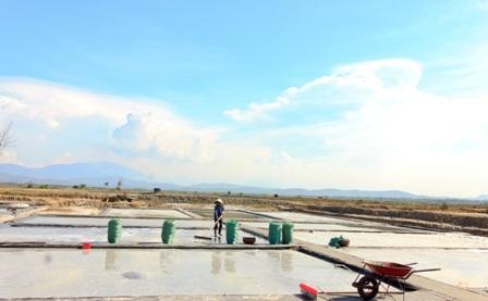 """""""Bóng muối"""" trên cánh đồng muối ở Quảng Nam - 7"""