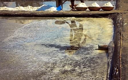 Bóng của họ in dưới ruộng muối
