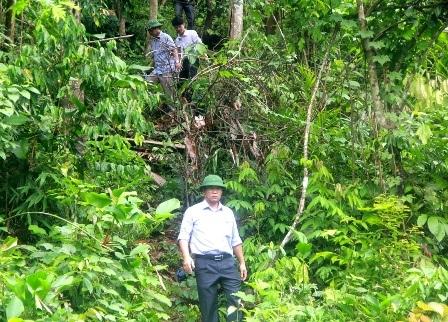 Ông Lê Trí Thanh - Phó Chủ tịch tỉnh Quảng Nam - trực tiếp kiểm tra gỗ lậu