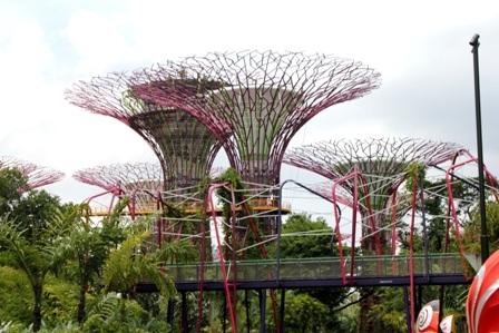 Khám phá công viên Garden by the Bay ở Singapore - 3