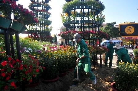 Tranh thủ nắng ấm, công nhân tất bật với việc trang trí đường hoa