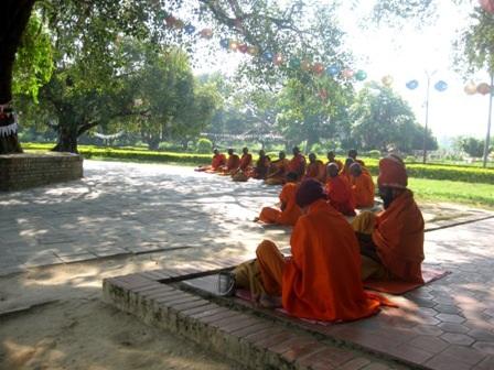 Phật tử các nước ngồi thiền quanh cây bồ đề thiêng liêng