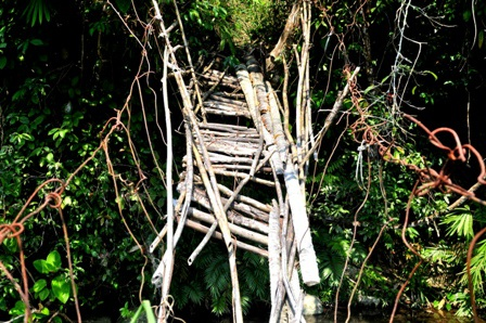"""Những tấm gỗ hay thân cây gỗ lót cầu đã mục nát. Nếu có muốn sang bên kia suối cũng không thể đi được vì những cây gỗ lót mặt cầu đã """"rơi rụng"""" gần hết"""