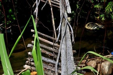 """Cái được gọi là """"lan can"""" cầu gồm 2 dây thép cột vào 2 gốc cây to ở 2 bên suối, bên dưới được lát những mảnh gỗ tạm bợ. Vì đã xuống cấp nên cầu bị nghiêng 1 bên càng nguy hiểm hơn cho người dân đi"""
