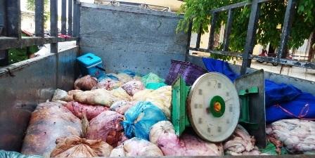Thịt mỡ động vật hôi thối đã được cơ quan chức năng Quảng Nam bắt giữ