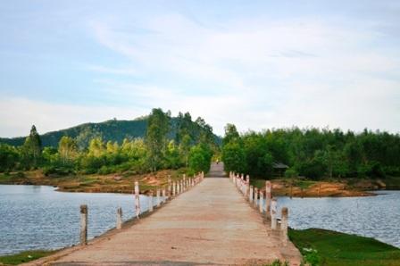 Con đường dẫn đến đồng sen Trà Lý