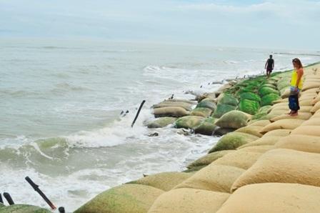 Giải pháp kè mềm được triển khai để bảo vệ bờ biển trong lúc chờ một giải pháp tổng thể, khoa học, bền vững