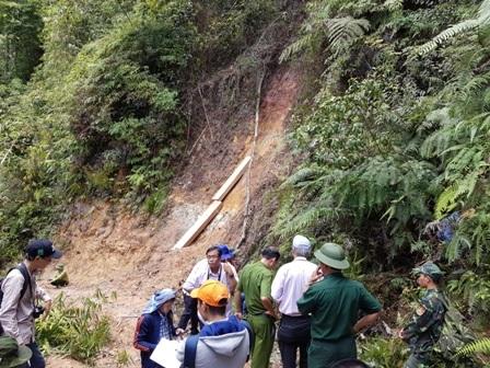 Lực lượng chức năng tỉnh Quảng Nam kiểm tra hiện trường vụ phá rừng pơmu ngày 20/7