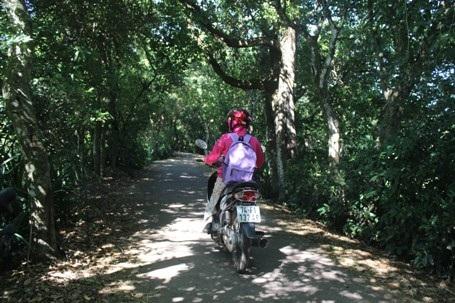 Con đường dẫn vào Khu sinh thái Trà Lộc