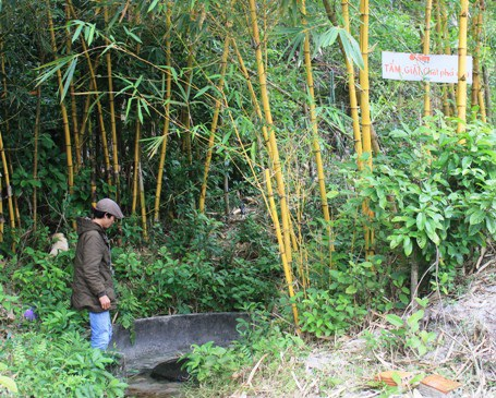 Quảng Trị: Độc đáo giếng cổ hàng trăm năm tuổi ở động Chùa - 1