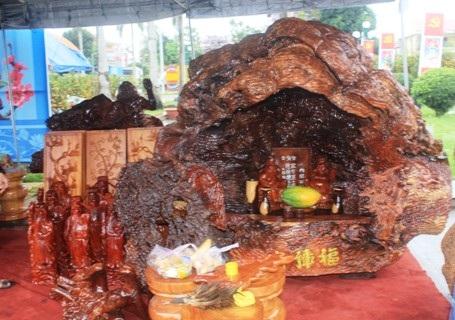 Đây là loại gỗ hương hóa thạch, có giá hơn 250 triệu đồng