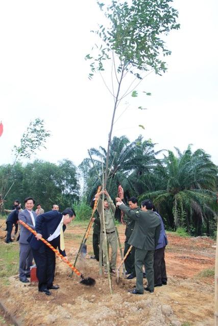 Quảng Trị: Trồng cây xanh trên các tuyến phố, công viên dịp đầu Xuân - 2