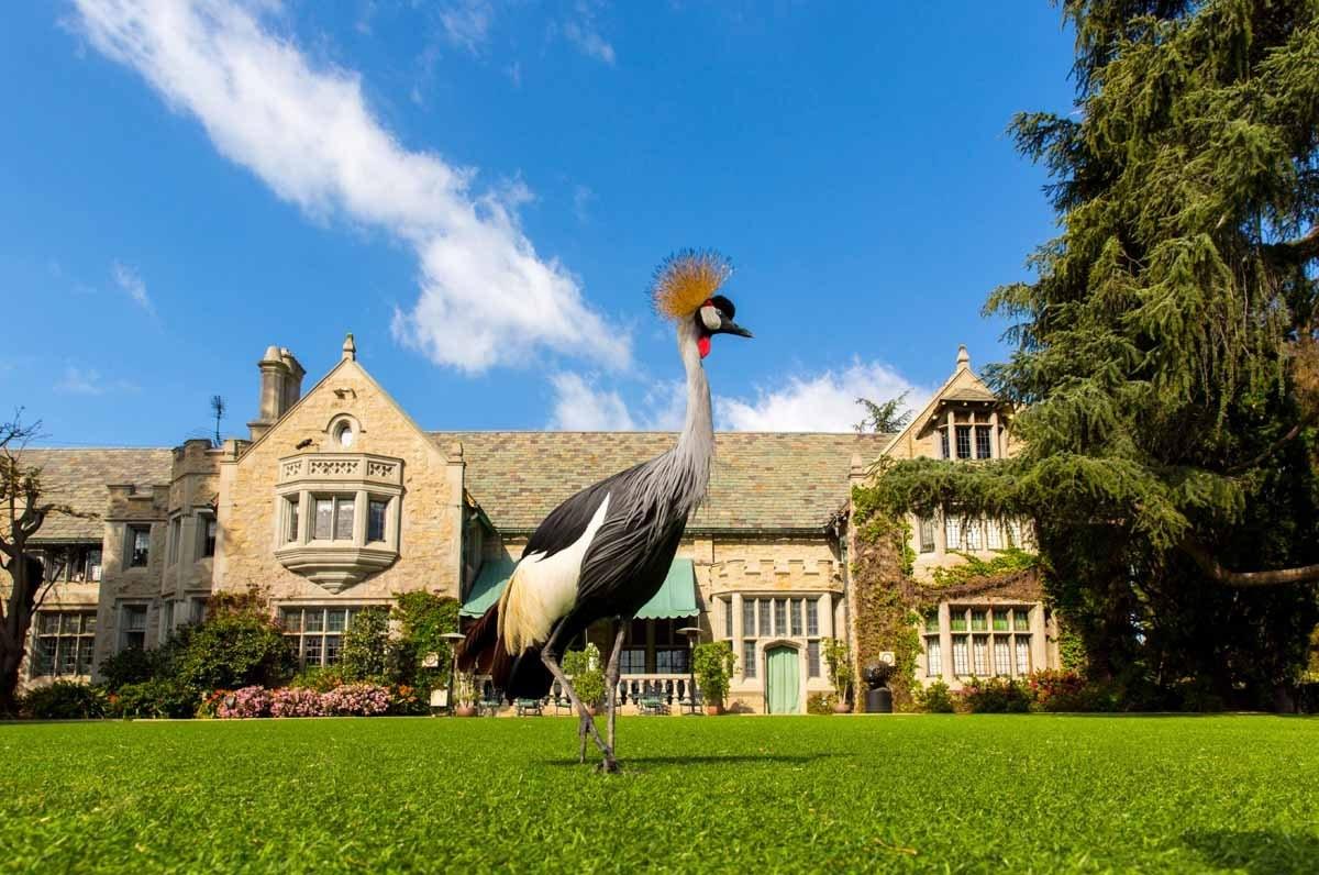 Biệt thự Playboy Mansion có tổng diện tích 20.000 feet vuông, tương đương 1858 mét vuông, nằm cạnh câu lạc bộ nổi tiếng Los Angeles Country Club, và giữa 2 thành phố Beverly Hills and Westwood