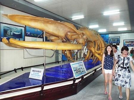 Bảo tàng Hải dương học Nha Trang là một trong 10 bảo tàng hấp dẫn và trở thành điểm đến thu hút du khách hàng đầu Việt Nam - Ảnh: Viết Hảo