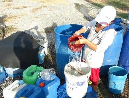 Người dân ở ngoại ô TP Nha Trang cho biết, dù có mưa nhưng chưa đủ ướt áo nên chuyện thiếu nước vẫn đang là vấn đề nan giải.