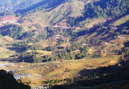 Trong đợt này, huyện Mường Lát có gần 100 hộ dân thiếu đói