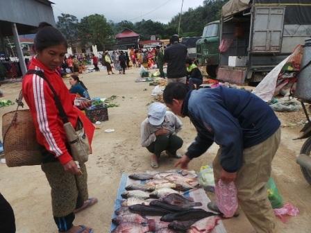 Hàng hóa tại phiên chợ Na Mèo chủ yếu là những sản vật địa phương