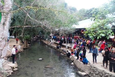 Người dân Cẩm Lương rất tôn trọng cá suối thần. Nhiều lần nước lụt cá tràn cả ra ruộng lúa. Đến lúc nước xuống, bà con nhìn thấy cá dốc màu xanh đen, biết không phải cá sông đều đem về suối thả lại.