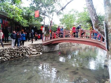 Suối cá thần Cẩm Lương là điểm đến hấp dẫn trong hành trình du lịch xứ Thanh của nhiều du khách trong và ngoài nước.