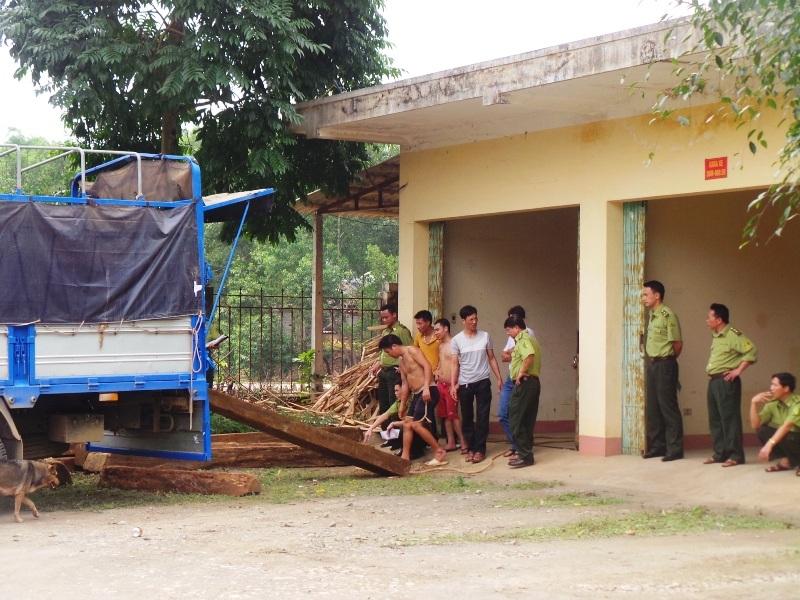 Lực lượng kiểm lâm kiểm tra xe gỗ
