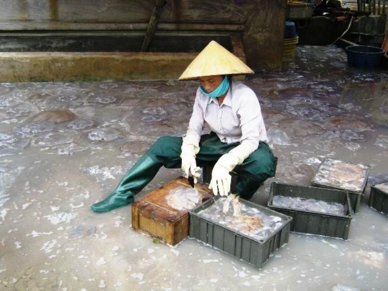 Chị N.T.V, xã Hoằng Trường, huyện Hoằng Hóa - người từng bị lừa bán san Trung Quốc làm vợ