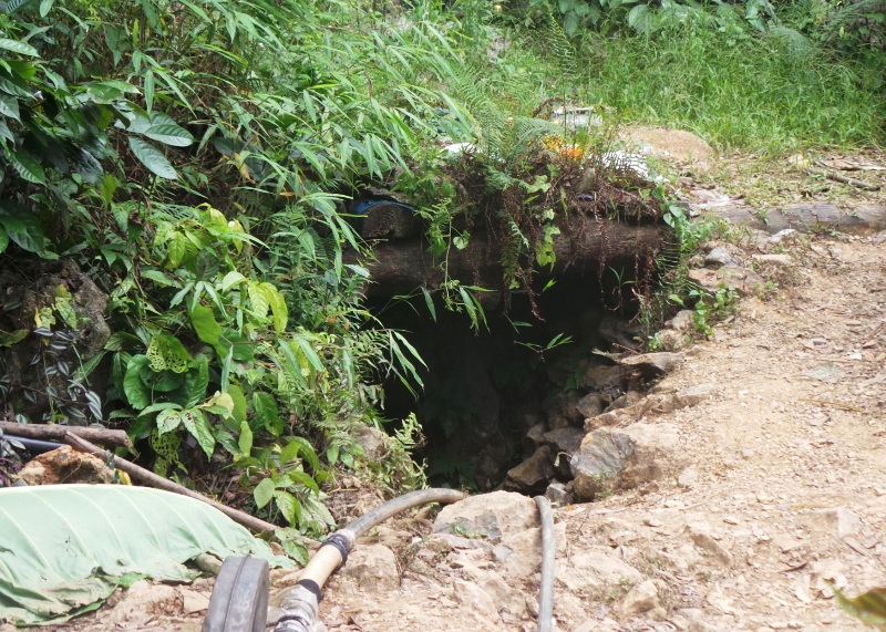 Hang đào vàng nơi các nạn nhân bị ngạt khí
