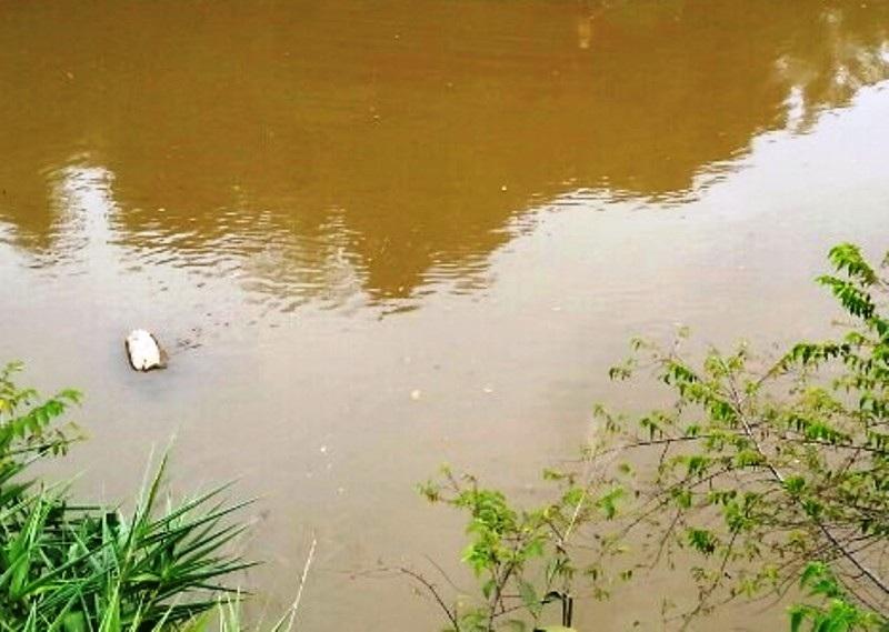Người dân địa phương mong các cơ quan chức năng làm rõ nguyên nhân cá chết trên sông Âm.