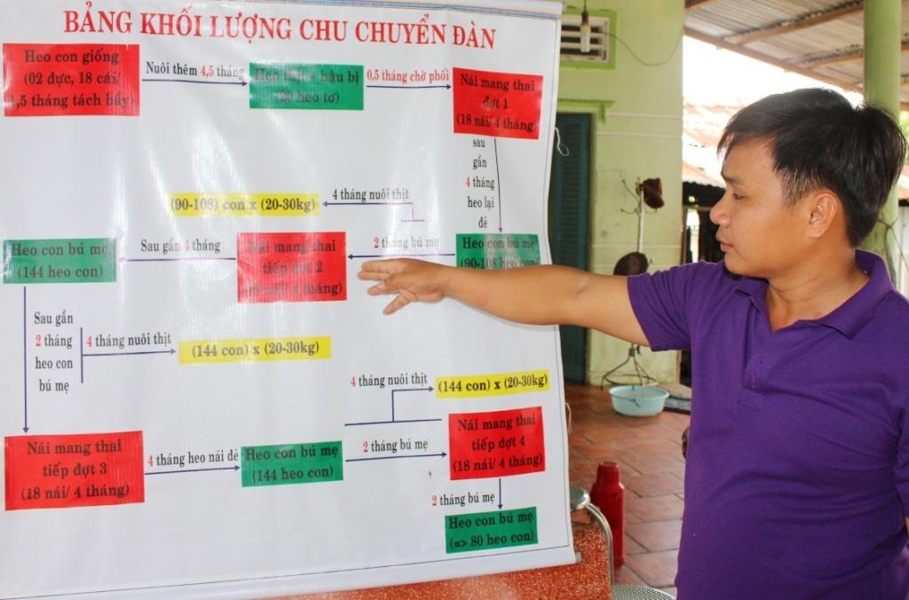 Do có kiến thức nên việc chăn nuôi của anh Dinh rất khoa học, tại trang trại của anh có hẳn một bảng theo dõi về khối lượng chu chuyển đàn heo