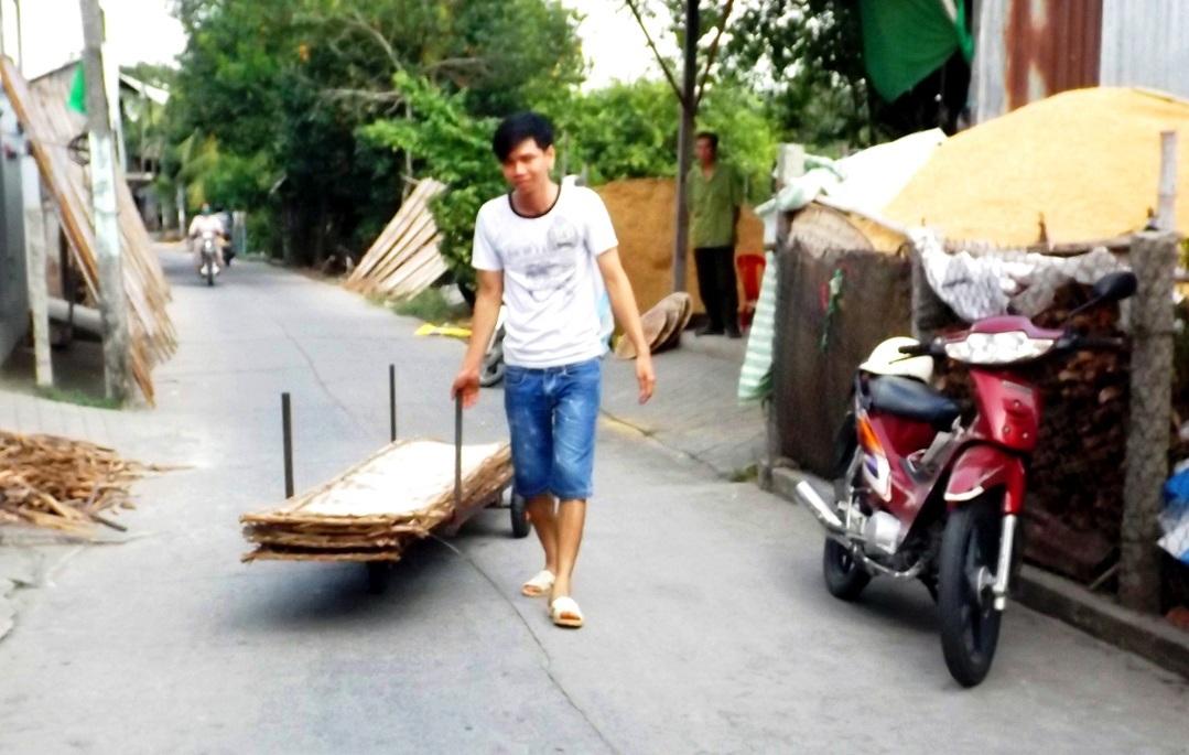 Những chiếc vỉ bánh được vận chuyển đến sân phơi bằng xe kéo.