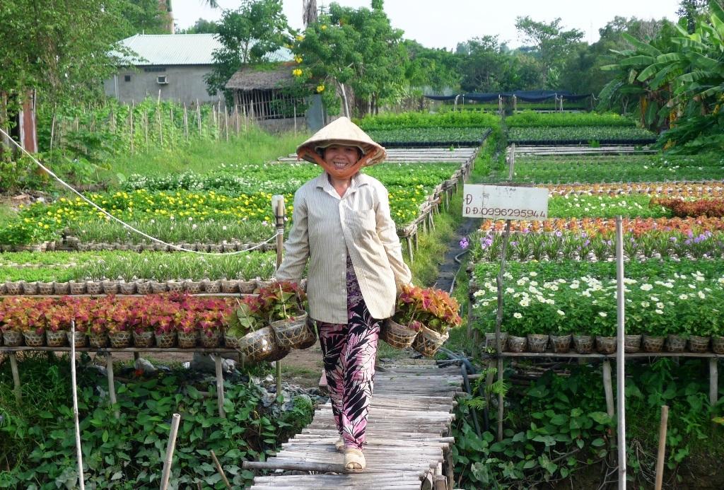 Do giá hoa năm nay tăng hơn mọi năm nên đối với bà con trồng hoa ở Làng hoa Sa Đéc gương mặt của họ lúc nàycũng tươi như hoa