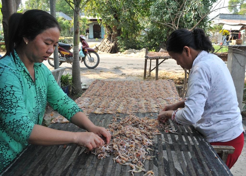 Công việc phơi khô cũng đang cho thu nhập ổn định đối với hàng chục lao động nghèo tại địa phương