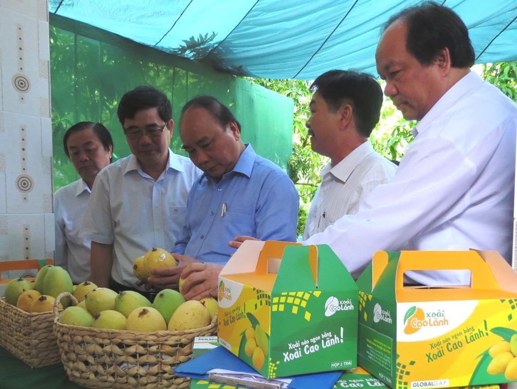 Thủ tướng Nguyễn Xuân Phúc đánh giá rất cao sự nỗ lực của Đồng Tháp trong việc thực hiện Đề án Tái cơ cấu ngành nông nghiệp (ảnh: Như Ý)